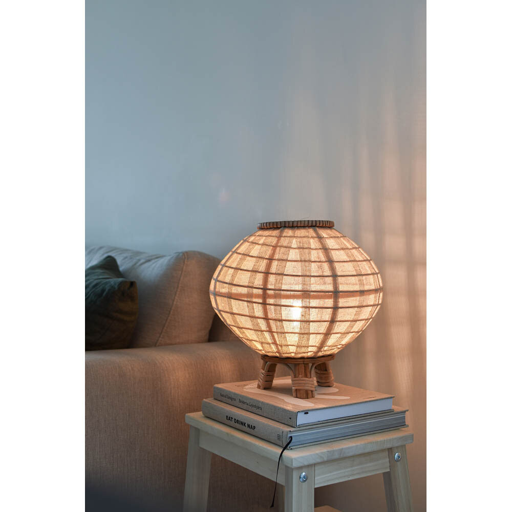 Borneo lampa bord 30 natur miljö